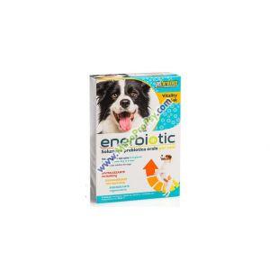 Enerbiotic dog- 6ti denní prebiotická kúra pro psy